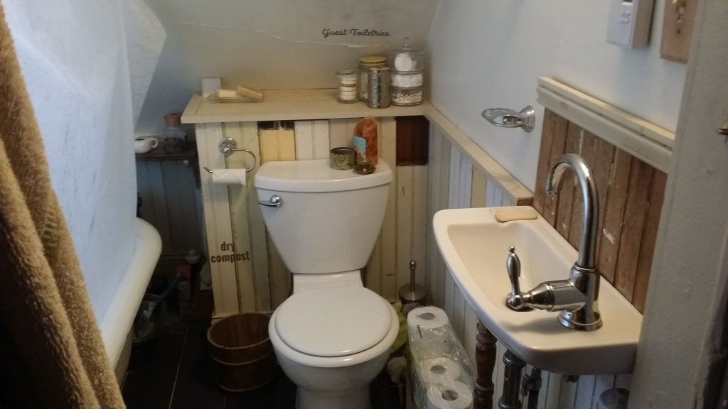 "Bathroom ""before"" picture."