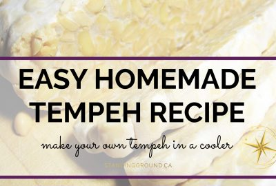 easy homemade tempeh title image